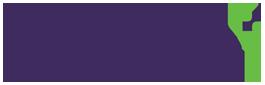 Purple Ventures: Incubators and Management Consultants